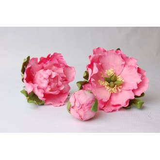 Sugar Flower Peony April 6th 2019 10 till 3PM with Les Gâteaux de Gilles