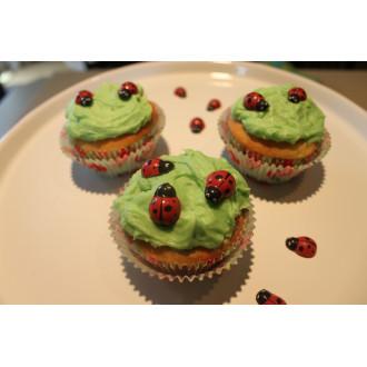 Ladybug Chocolate Mold (Package of 48)