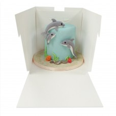 Extra Deep Cake Box With Window 14*14*14 (Pick Up Only)