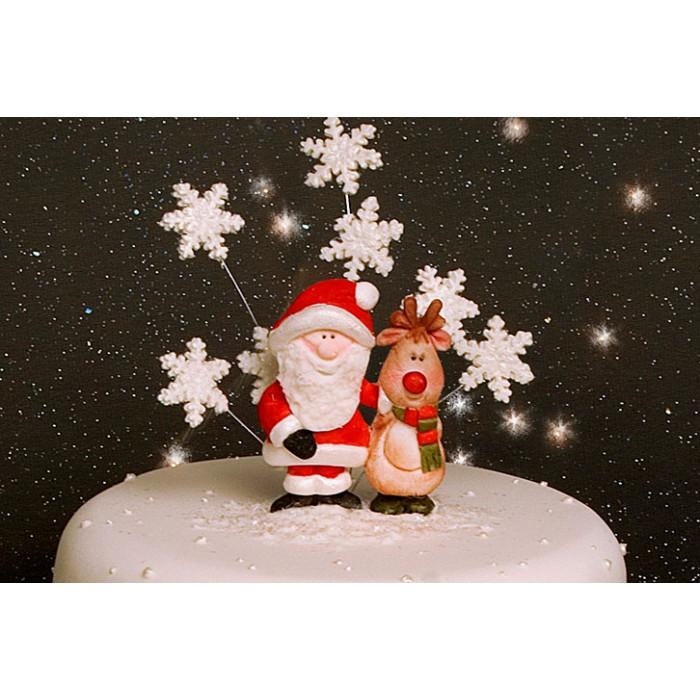 Karen Davies Santa & Rudolph Silicone Mold
