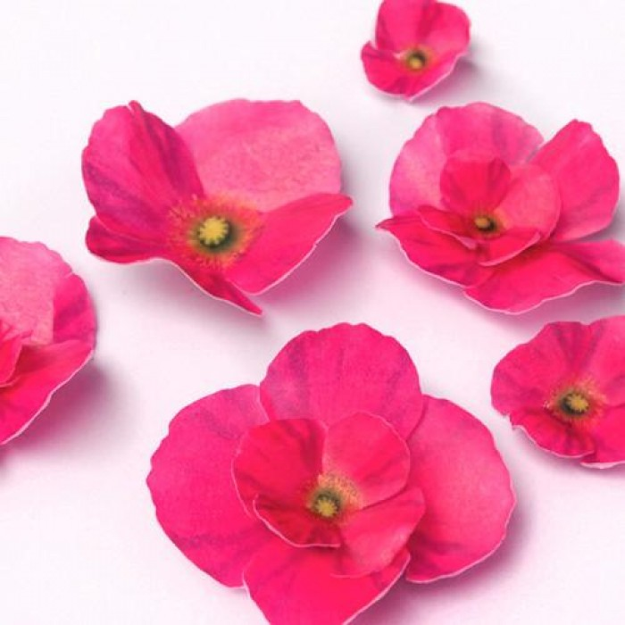 Wafer Paper Edible Precut Flowers Hot Pink Poppy (20 Pieces)