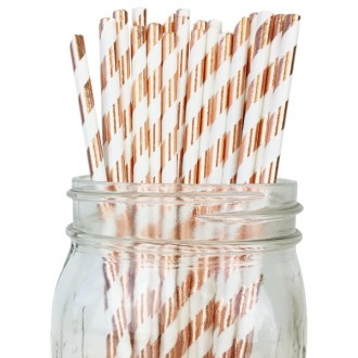 Paper Straws - Stripes Metallic Rose Gold