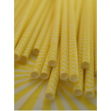 Paper Straws - Chevron Orange