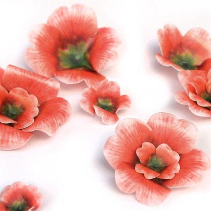 Wafer Paper Edible Precut Flowers Geranium (20 Pieces)
