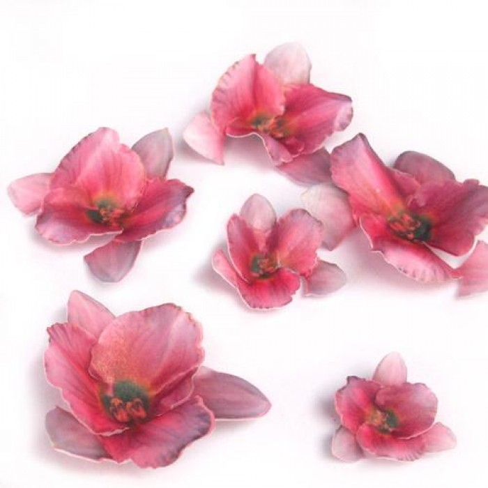 Wafer Paper Edible Precut Flowers Pink Lily (20 Pieces)