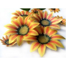 Wafer Paper Edible Precut Flowers Sunflower (20 Pieces)