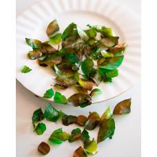 Edible Rose Petals - Green Leaves
