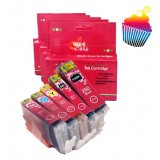 Canon Edible Ink Tanks for 255 Series with Chips Set of 5 (Ink4Cakes) XXL