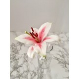 Sugar Flower Stargazer lily with Sweet Savour by Felicia March 22nd 10 till 1:30PM