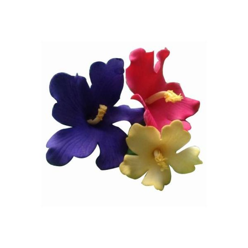 FMM Hawaiian Flower Cutter