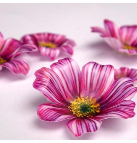 Wafer Paper Edible Precut Flowers Cosmos (20 Pieces)