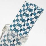 Paper Straws - Checkered Blue